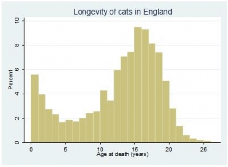 Longevity of cats in England